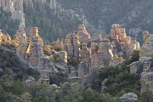 Chiricahua National Monument1