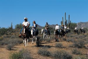 OA105 Horseback Riding