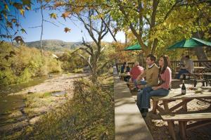 Page Springs Vineyard in Sedona 1