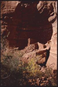Palatki Ruins  near Sedona bearbeitet-1