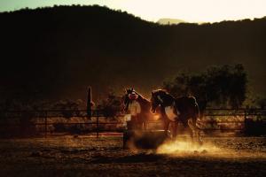White Stallion Ranch S38aqxfXTVcazVi-OfeCIPt18q0ABlZBh cmyk l