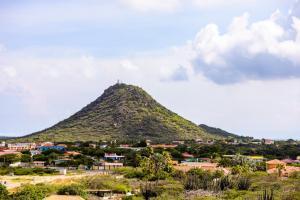 Antrag auf Aruba 1024x768-3
