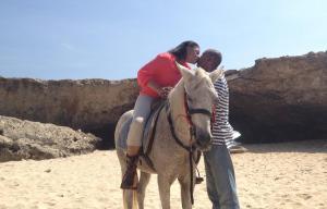 Antrag auf Aruba 1024x768-4