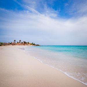 Arashi Beach Shoreline