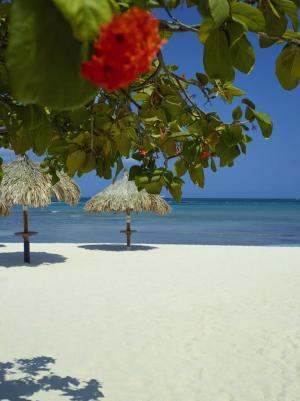 Aruba Eagle Beach 2014
