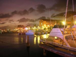 Aruba Tours to go-06