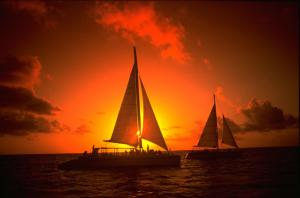 Aruba Tours to go-24