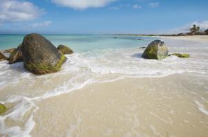 Rocks at Arashi Beach