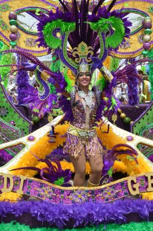 carnival 2014 purple and yellow road piece 0