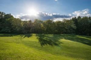 Golf-Stegersbach-Suedburgenlandkurs 134 585bfbfe6e48