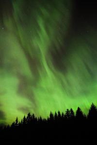 northern-lights 30608458627 o