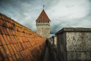estonianway-of-a-leaning-tower-48 48005826978 o