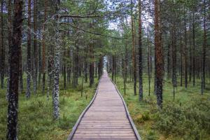 estonianway-of-choral-music-35 48635913752 o