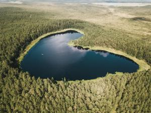 estonianway-of-romance-37 48635400563 o