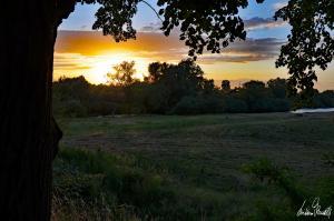 Sonnenuntergang an der Aller-06