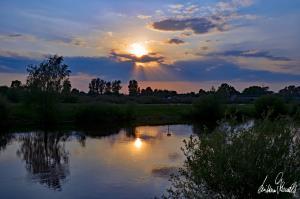 Sonnenuntergang an der Aller-11