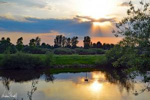 Sonnenuntergang an der Aller-15