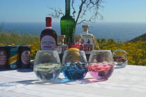 Gin Tasting 3