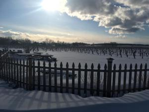 Discover Long Island Palmer Vineyards Winter