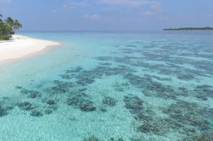 Malediven (53)