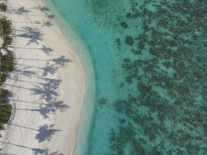 Malediven (56)