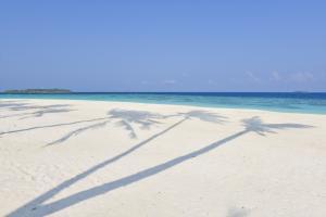 Malediven (61)