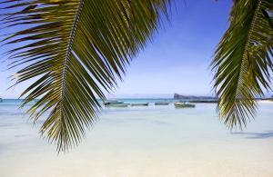 Mauritius-61