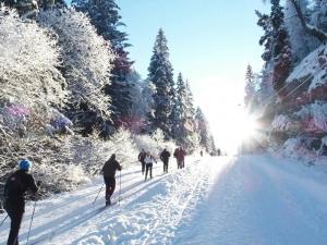 Foap-sunday-skiing-in-3471613- Photo Foap