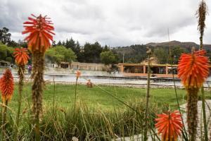 Baños del Inka