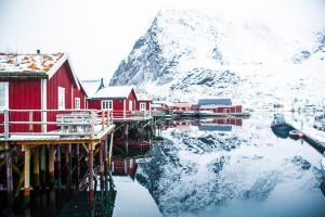 Lofoten Norwegen Conor Sheridan Unsplash