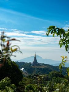 Doi Ithanon Nationalpark Thailand haydn-golden-a P2nDysDt0-unsplash
