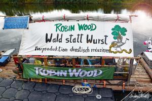 ROBIN-WOOD-03