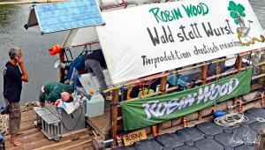 ROBIN-WOOD-12