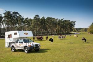 Serengeti-Park-Ranger-Lodges(2)