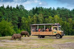 06-Serengeti-Safari (VIP-Jeep-Tour)