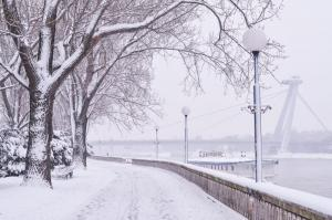 winter ba