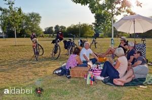 Picknick im Allerpark Verden-05