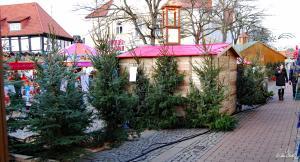 Weihnachtsmarkt-Verden-2012 (17)