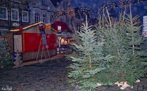 Weihnachtsmarkt-Verden-2012 (20)