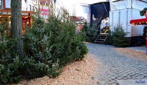 Weihnachtsmarkt-Verden-2012 (21)
