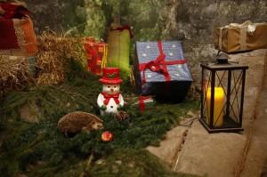 Weihnachtsmarkt Koenigstein-06